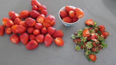 Coulis de fraises - 1.1