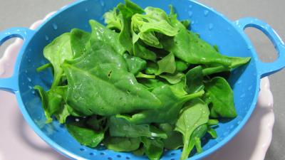 Tétragone en salade - 1.3