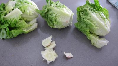 Capelletis et son velouté champignons et laitues - 1.3