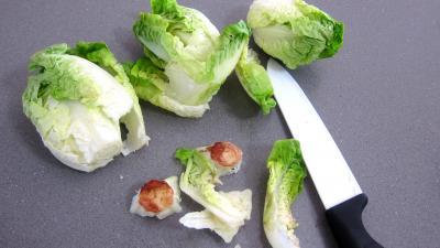 Ricotta en croquettes au citron vert - 3.3