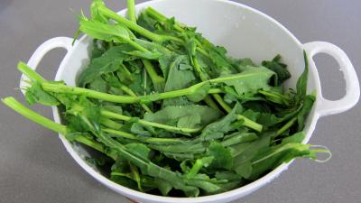 Salade de broutes - 2.3