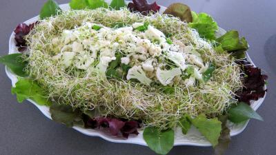 Recette Couscous, légumes, fines herbes et gambas