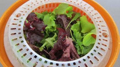 Limandes et sa salade de pousses de bambou et graines germées - 2.3
