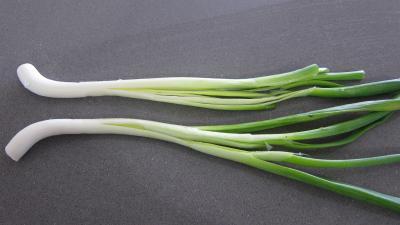 Limandes et sa salade de pousses de bambou et graines germées - 3.1