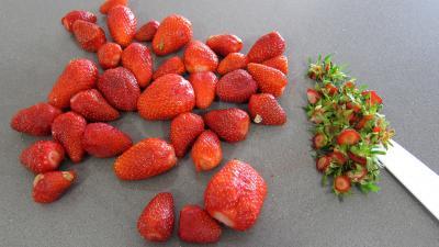Glace aux fraises - 4.2
