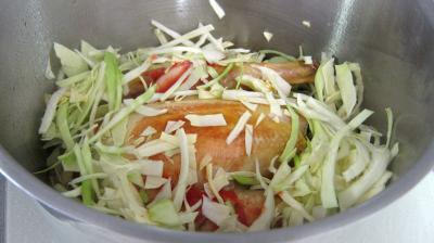 Faisan au chou et aux carottes - 8.1