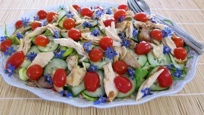 radis : Assiette de restes de poulet en salade