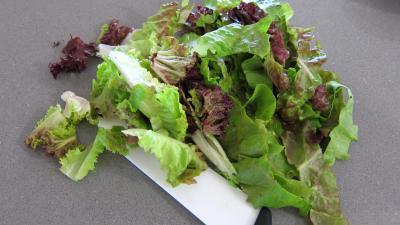 Magrets en brochettes à la plancha en salade - 1.3
