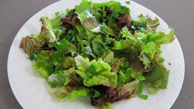 Magrets en brochettes à la plancha en salade - 3.1