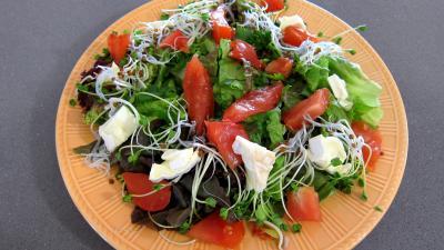 Magrets en brochettes à la plancha en salade - 3.3