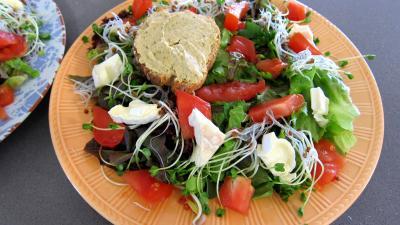 Magrets en brochettes à la plancha en salade - 4.2