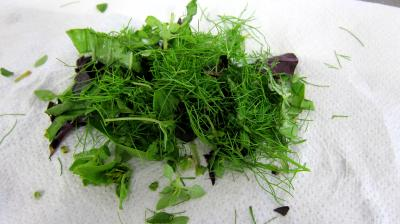 Salade tiède de poisson - 4.2