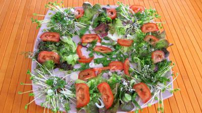 Piments doux en salade - 7.2
