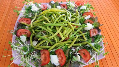 Piments doux en salade - 8.1