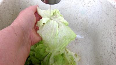 Salade haricots beurre du jardin - 1.1