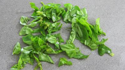 Salade haricots beurre du jardin - 2.1