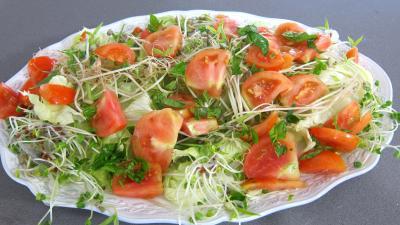 Salade haricots beurre du jardin - 7.1
