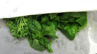 Gazpacho andalou aux poivrons verts - 3.1