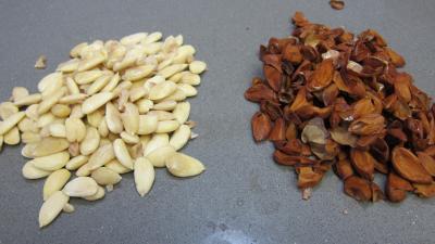 Gazpacho andalou aux poivrons verts - 5.3