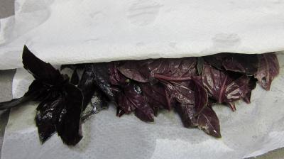 Artichauts en ratatouille - 1.3