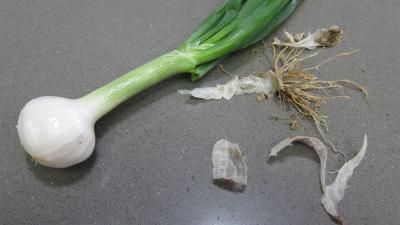 Lapin rôti aux échalotes - 2.2
