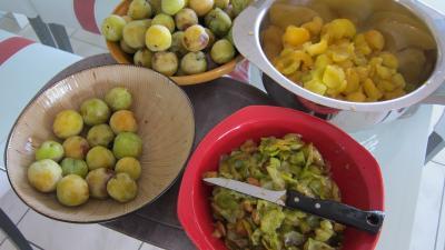 Marmelade facile de prunes variées - 1.1