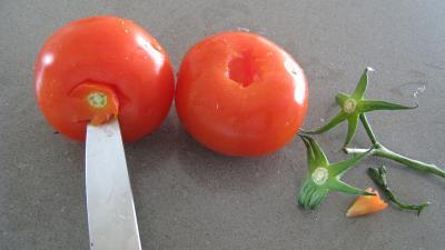 Tomates farcies au tofu - 1.2