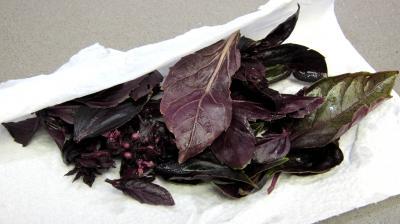 Haricots verts au four gratinés - 1.1