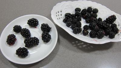 Cupcakes aux nashis et mûres - 1.1