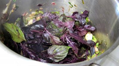 Conserve de ragoût de blettes et d'oseille au basilic - 8.1