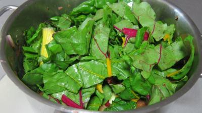 Conserve de ragoût de blettes et d'oseille au basilic - 9.1