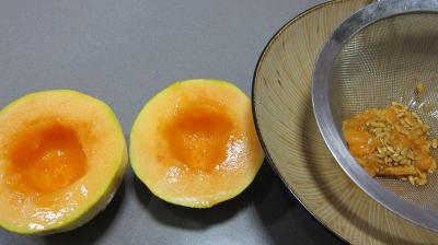 Mascarpone au melon - 7.3