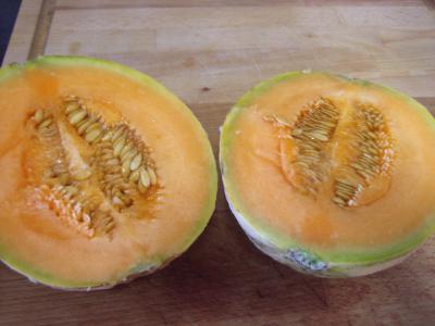 Salade de melon meringuée - 4.1