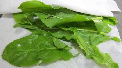 Aubergines crues en salade - 2.4