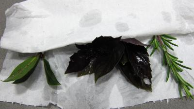Soupe de brocolis et légumes - 1.1