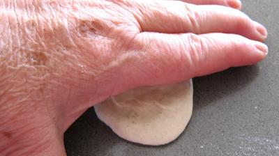 Dim sum aux gambas à la farine de froment - 4.1