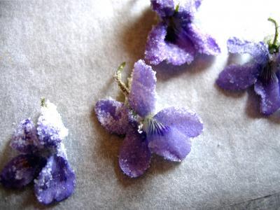 Fleurs cristallisées - 4.2