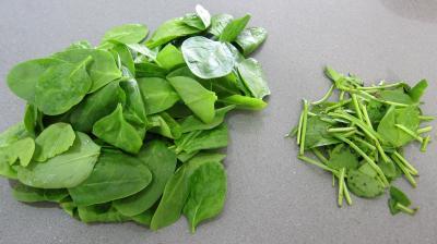 Noix saint Jacques en salade - 1.1