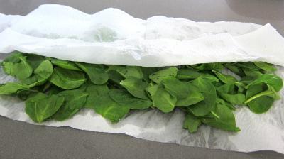 Noix saint Jacques en salade - 1.3