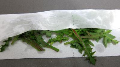 Salade de magret au Cantal - 3.4
