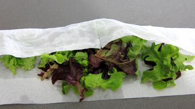 Salade de magret au Cantal - 4.2