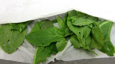 Salade de magret au Cantal - 3.2