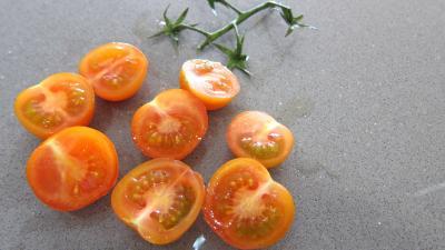 Tarte croustillante aux légumes - 5.1