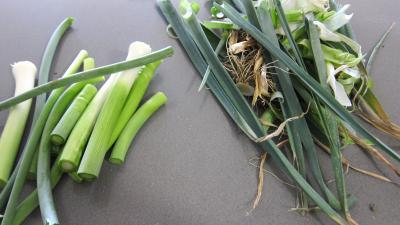 Risotto aux champignons noirs et mascarpone - 1.2