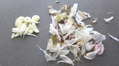 Pesto - 1.2
