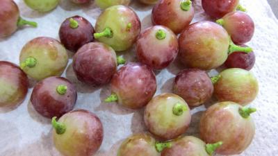 Raisins à l'eau de vie et épices - 1.2