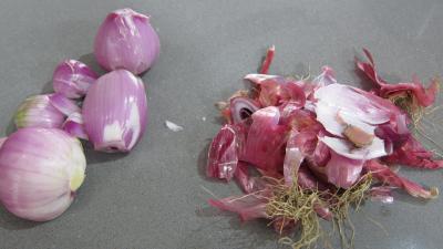 Conserves de tomates aux champignons - 1.2