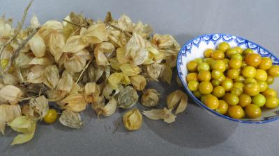 Confiture de physalis ou &quot;d&#39;amour en cage&quot; - 1.2