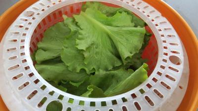 Soupe minceur de batavia et légumes - 3.1