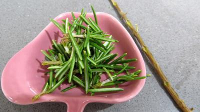 Soupe aux germes de soja - 4.1